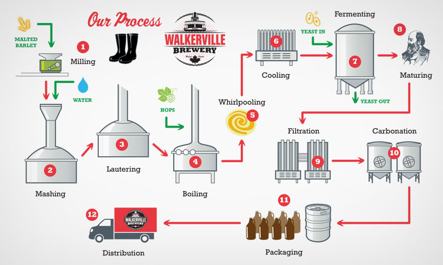 Brewing Process Poster